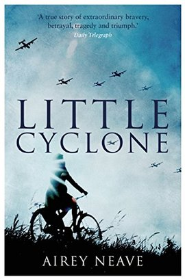 Cover little cyclone cover