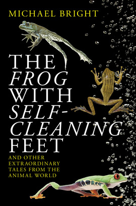 Cover the frog with self cleaning feet